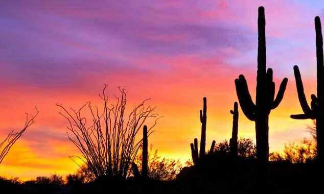 Houses for Sale in Maricopa for $250,000
